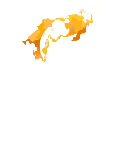 nishiki-logo-bg01