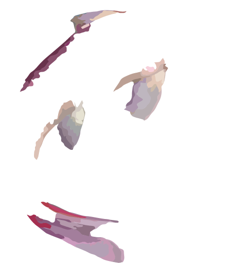 nishiki-logo-bg02